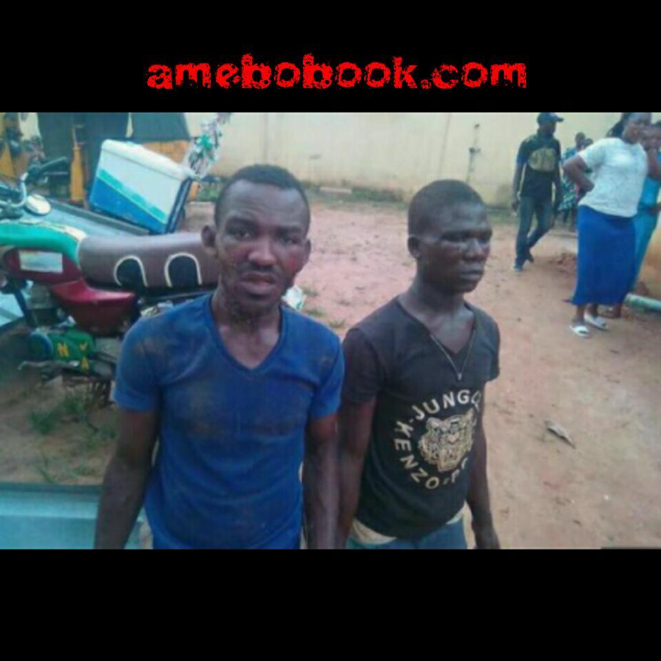 Erinmole Adetokumbo