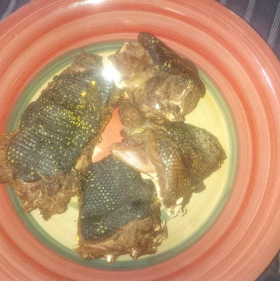 Big Monitor Lizard Killed In A Fish Farm 4
