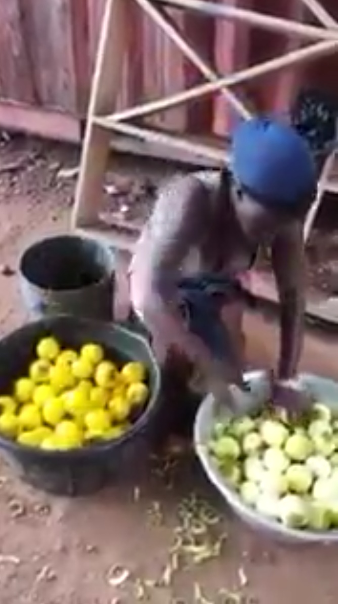 Woman Dyeing Unripe Oranges To Make It Look Ripe (1)