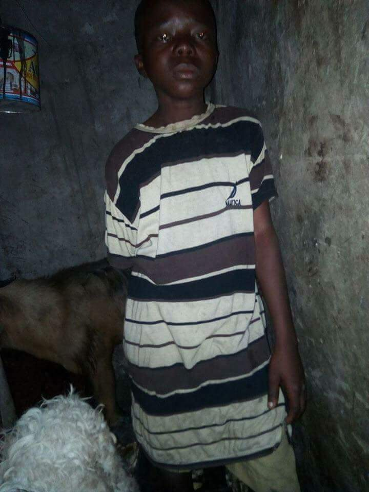 Houseboy Chained And Locked Up In Cage With Goats In Lagos (2)