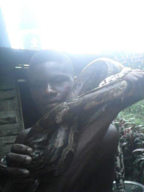 Young Nigerian Man Killed A Big Snake And Displayed It Around His Neck (3)