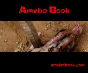 Children Playing Found Dead Baby Inside A Gutter In Kaduna
