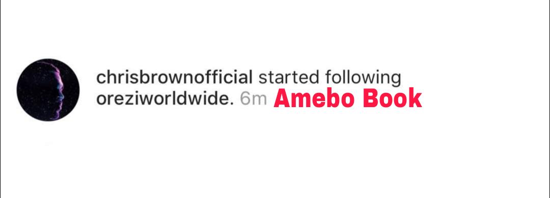 Chris Brown Follows Orezi On Instagram (2)
