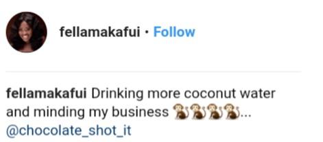 Fella Makafui Reacted To The Moesha Boduong CNN Interview (3)